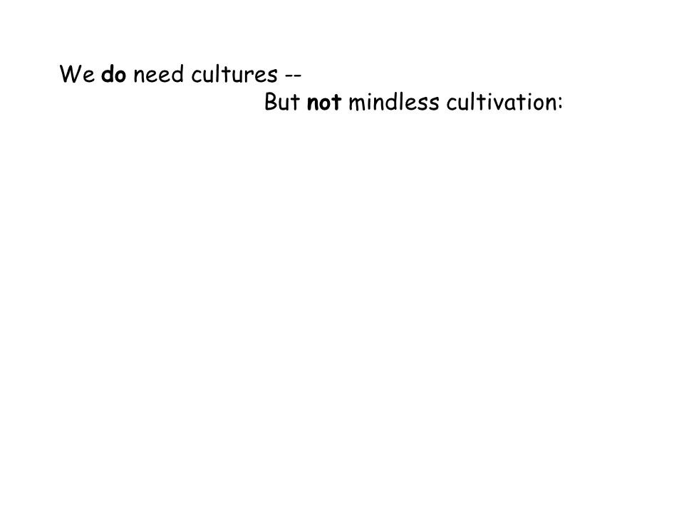 We do need cultures -- But not mindless cultivation: