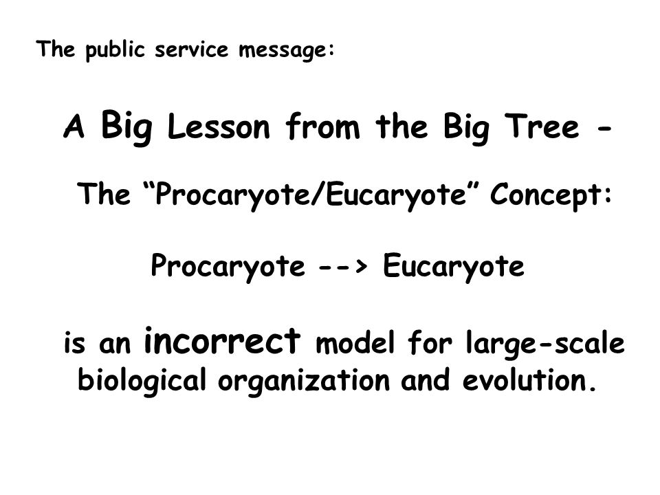 A Big Lesson from the Big Tree - The Procaryote/Eucaryote Concept: Procaryote --> Eucaryote is an incorrect model for large-scale biological organization and evolution.