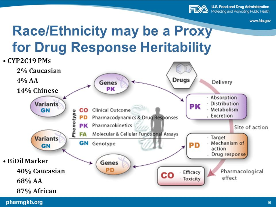 16 Race/Ethnicity may be a Proxy for Drug Response Heritability pharmgkb.org CYP2C19 PMs 2% Caucasian 4% AA 14% Chinese BiDil Marker 40% Caucasian 68% AA 87% African