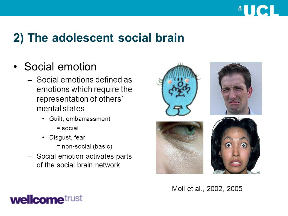 2) The adolescent social brain Social emotion –Social emotions defined as emotions which require the representation of others' mental states Guilt, em