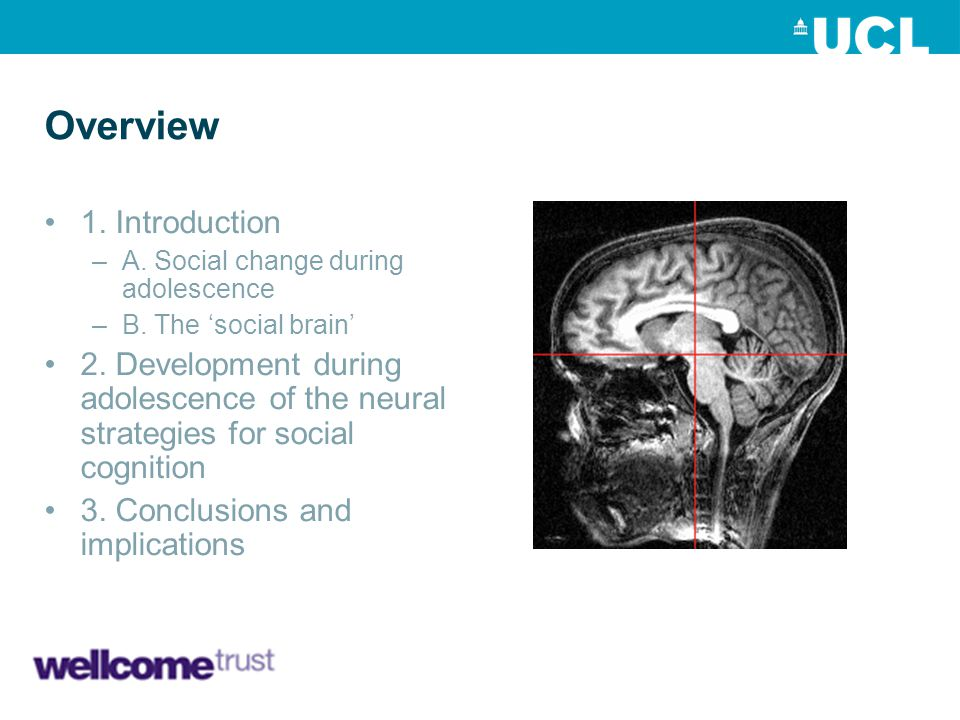 1) B) The social brain mPFC pSTS/TPJ ii.pSTS/TPJ –Social prediction and perspective-taking E.g.