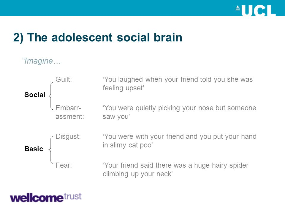 2) The adolescent social brain 'You were quietly picking your nose but someone saw you' 'You laughed when your friend told you she was feeling upset'
