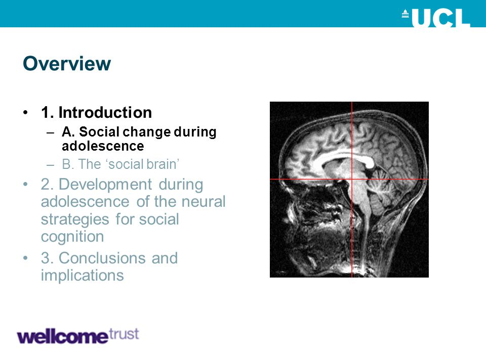 Overview 1. Introduction –A. Social change during adolescence –B. The 'social brain' 2. Development during adolescence of the neural strategies for so