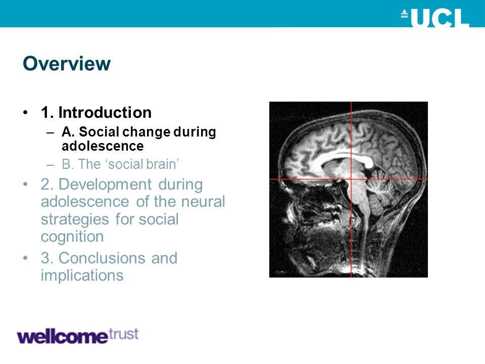 1) B) The social brain mPFC pSTS/TPJ iii.