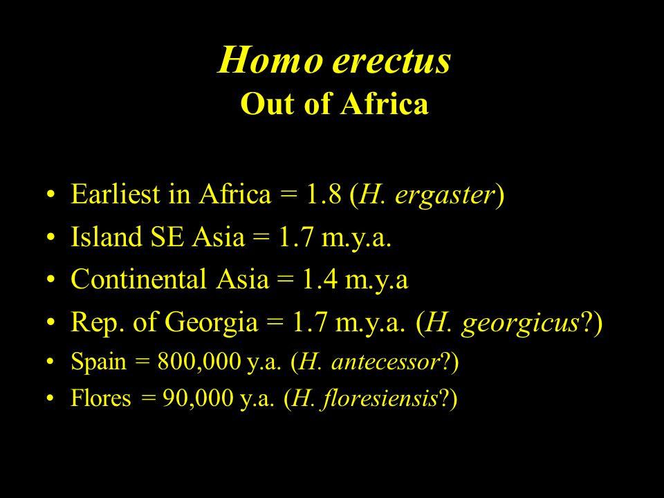 Homo erectus Out of Africa Earliest in Africa = 1.8 (H. ergaster) Island SE Asia = 1.7 m.y.a. Continental Asia = 1.4 m.y.a Rep. of Georgia = 1.7 m.y.a