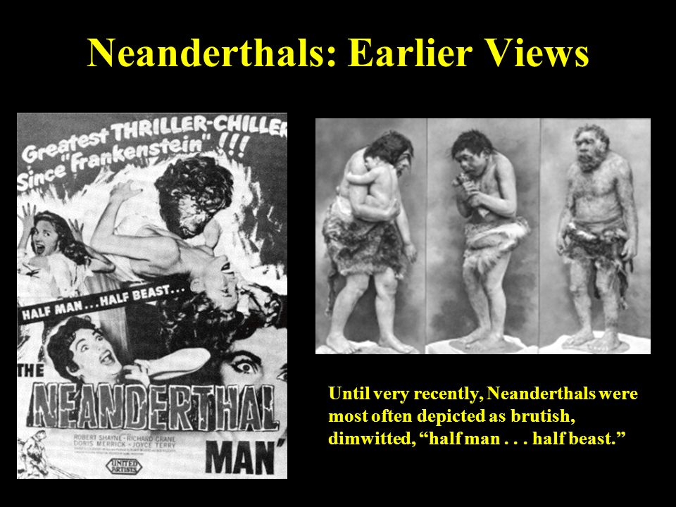"Neanderthals: Earlier Views Until very recently, Neanderthals were most often depicted as brutish, dimwitted, ""half man... half beast."""