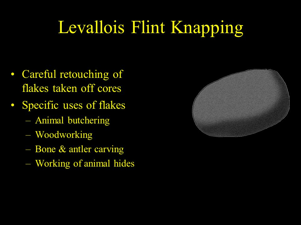 Levallois Flint Knapping Careful retouching of flakes taken off cores Specific uses of flakes –Animal butchering –Woodworking –Bone & antler carving –