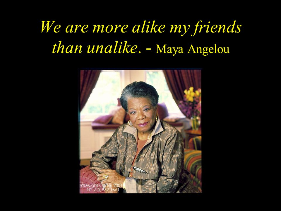 We are more alike my friends than unalike. - Maya Angelou