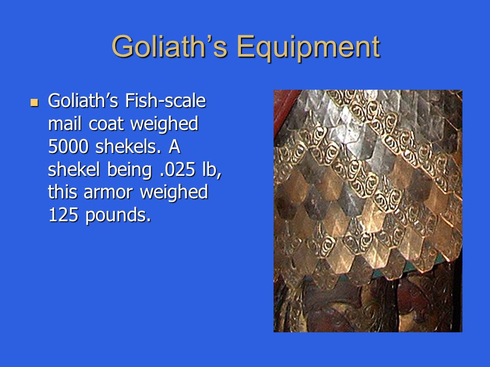 Goliath's Fish-scale mail coat weighed 5000 shekels. A shekel being.025 lb, this armor weighed 125 pounds. Goliath's Fish-scale mail coat weighed 5000