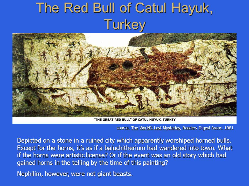 The Red Bull of Catul Hayuk, Turkey Depicted on a stone in a ruined city which apparently worshiped horned bulls. Except for the horns, it's as if a b