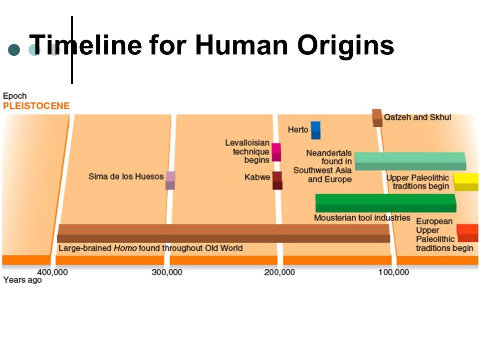 Timeline for Human Origins