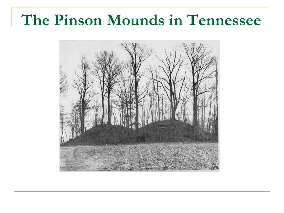The Pinson Mounds in Tennessee