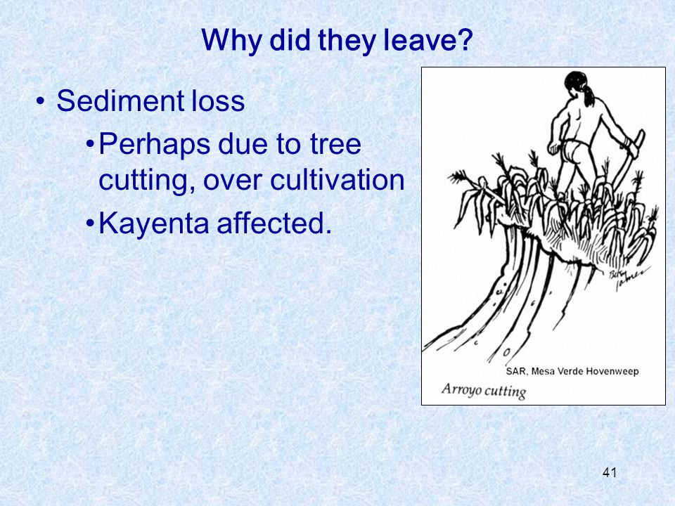 41 Sediment loss Perhaps due to tree cutting, over cultivation Kayenta affected. Why did they leave?