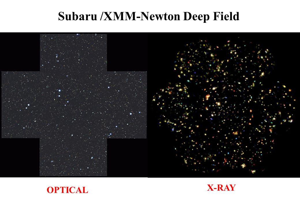 Subaru /XMM-Newton Deep Field OPTICAL X-RAY