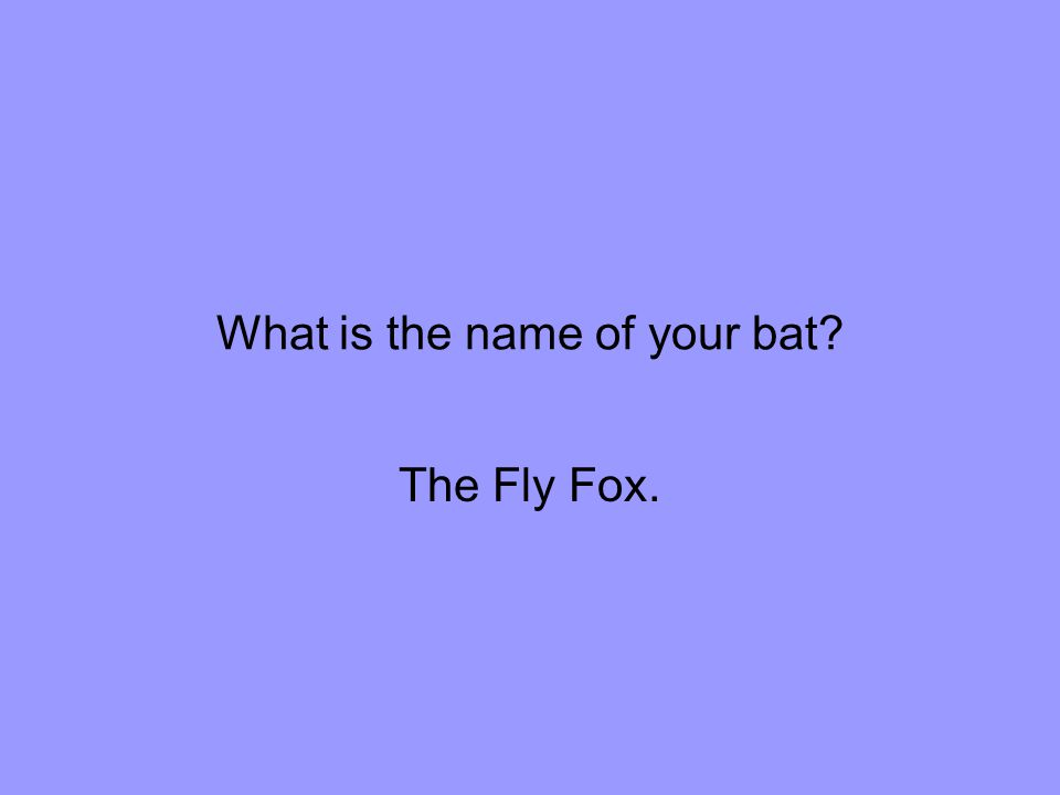What is the name of your bat The Fly Fox.