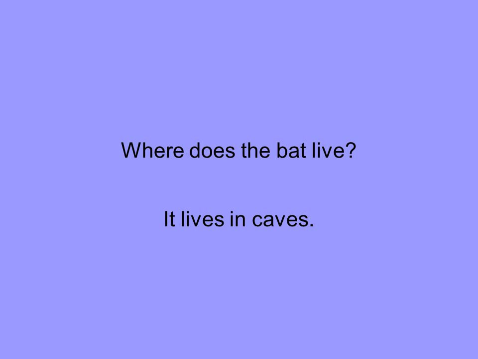 Where does the bat live It lives in caves.