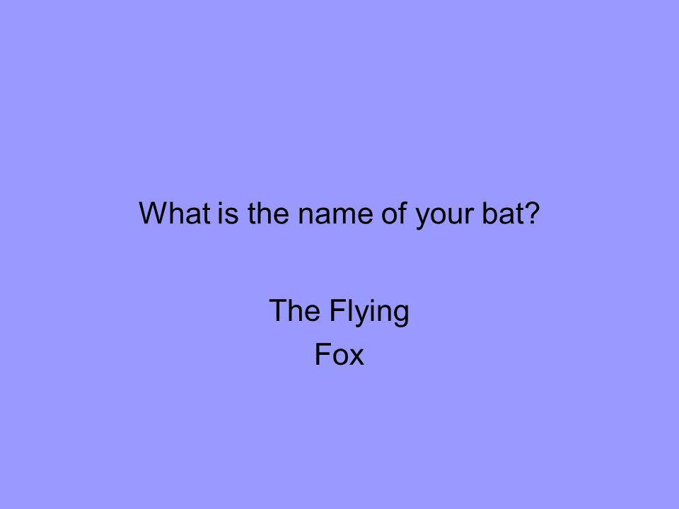 What is the name of your bat The Flying Fox