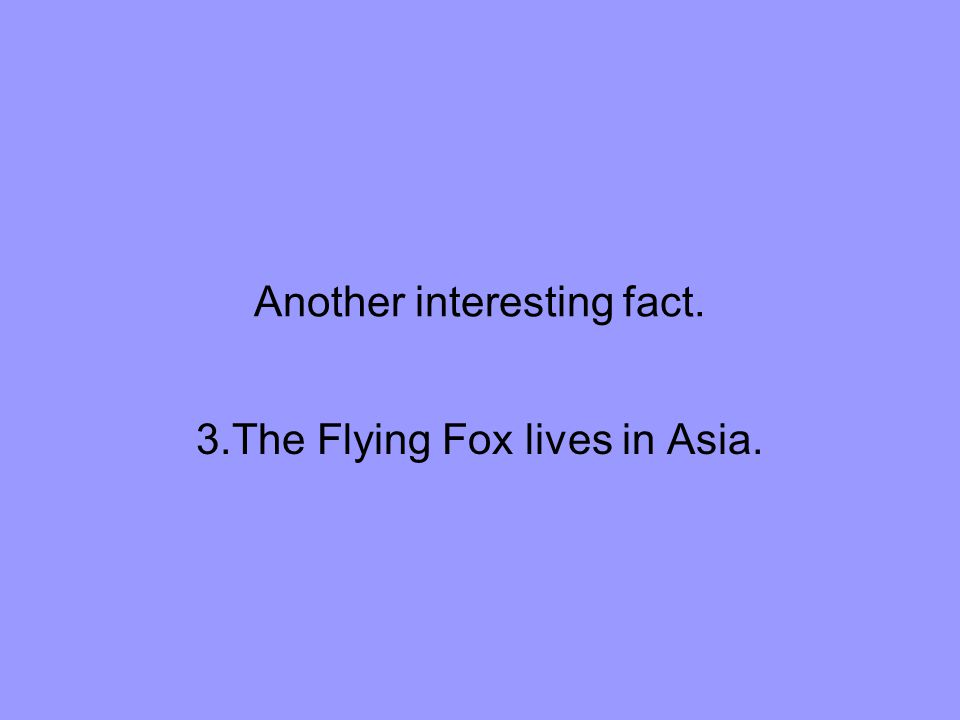 Another interesting fact. 3.The Flying Fox lives in Asia.