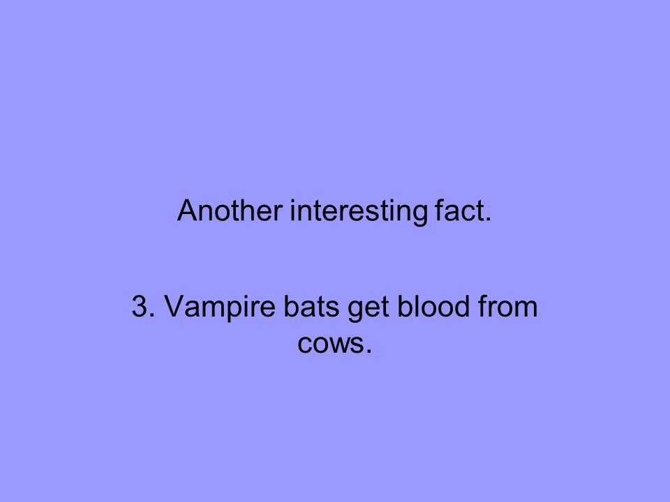 Another interesting fact. 3. Vampire bats get blood from cows.