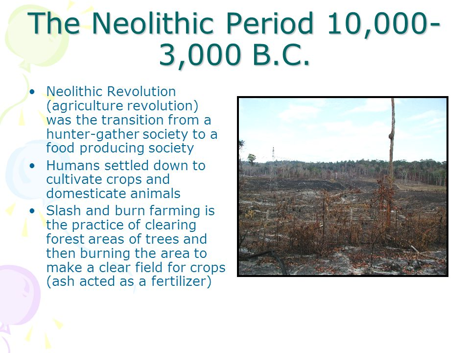 The Neolithic Period 10,000- 3,000 B.C.