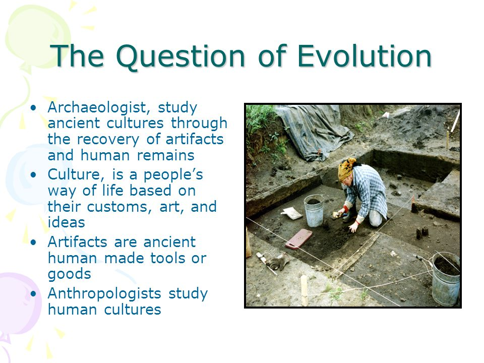 The Question of Evolution Archaeologist, study ancient cultures through the recovery of artifacts and human remains Culture, is a people's way of life based on their customs, art, and ideas Artifacts are ancient human made tools or goods Anthropologists study human cultures
