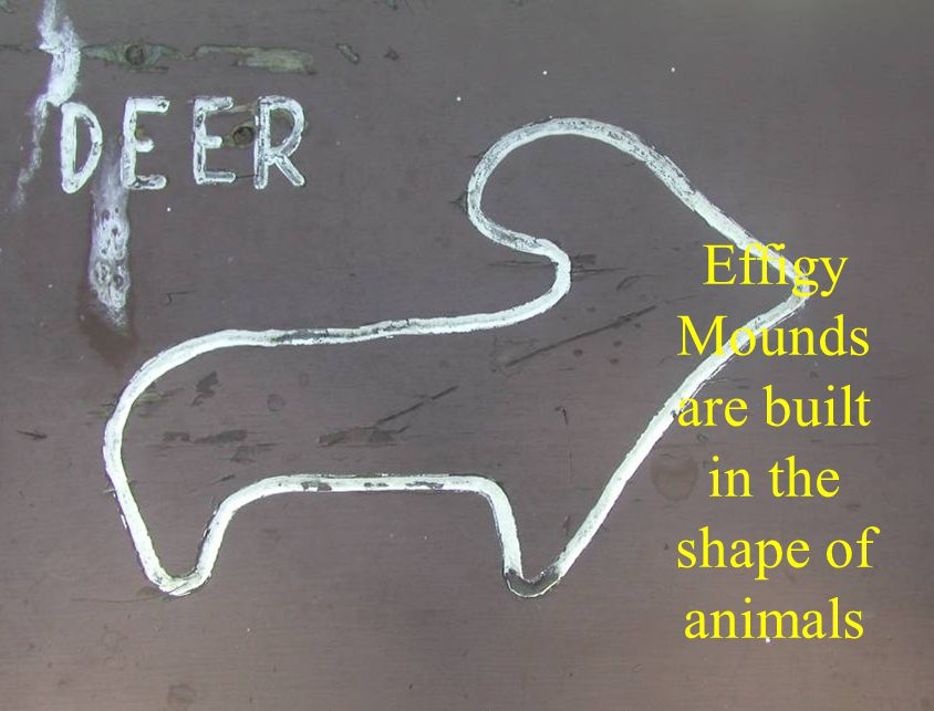 Effigy Mounds are built in the shape of animals