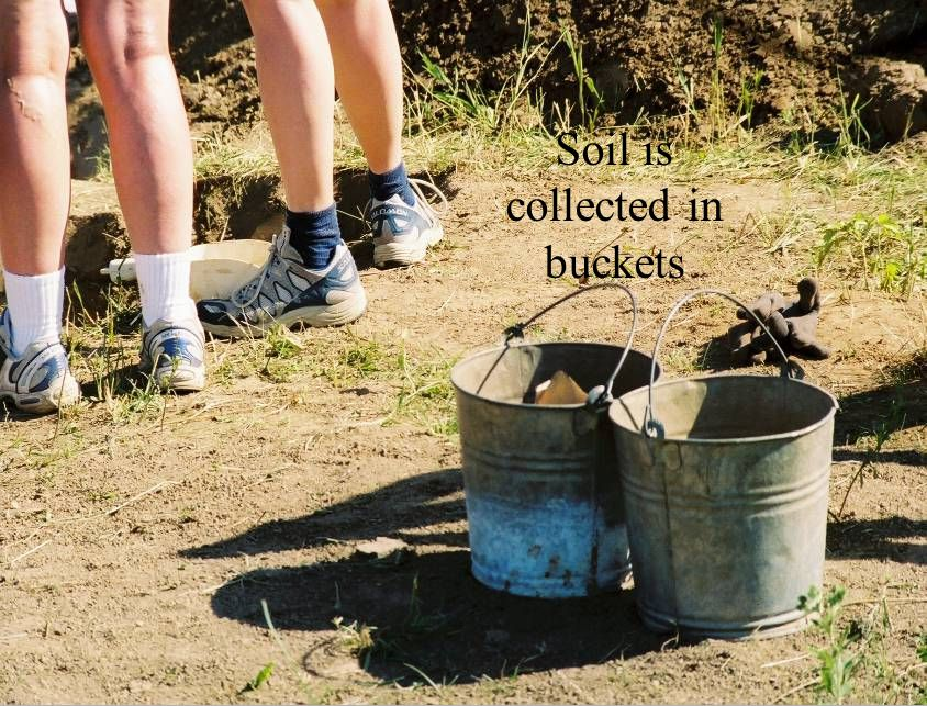 Soil is collected in buckets