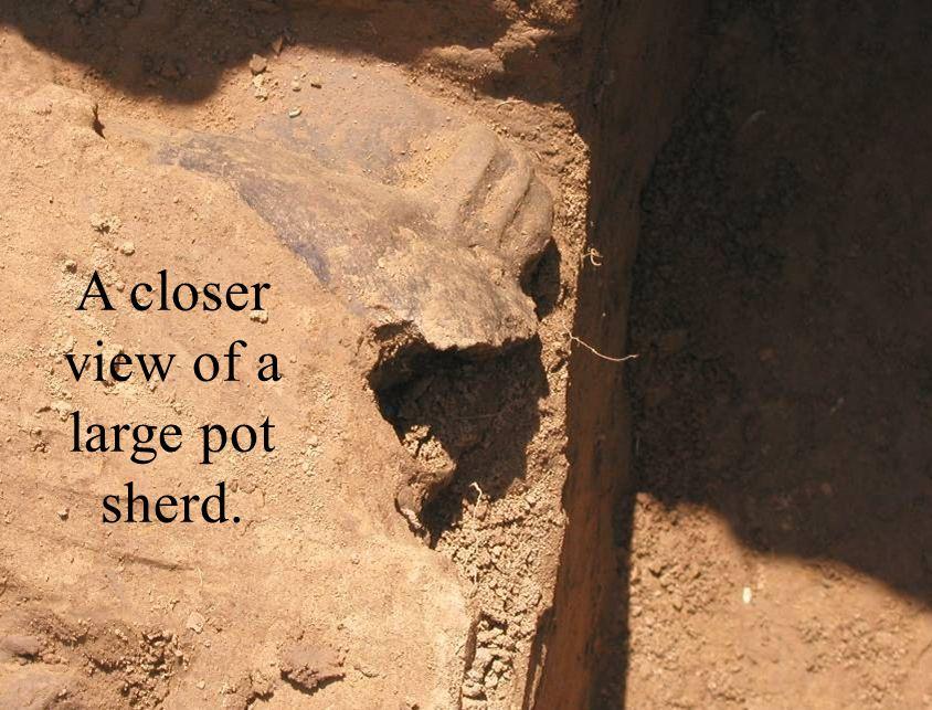 A closer view of a large pot sherd.