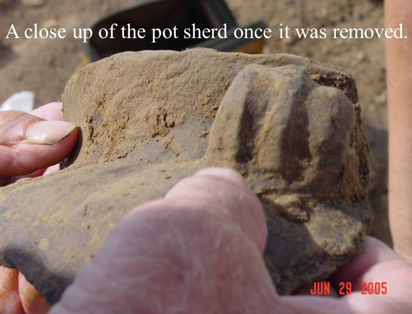 A close up of the pot sherd once it was removed.