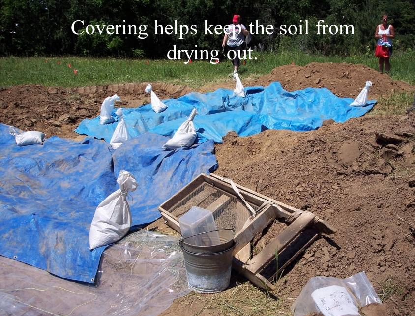 Covering helps keep the soil from drying out.