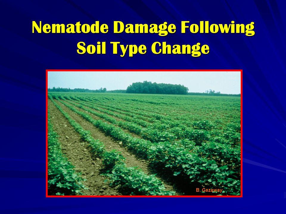 Nematode Damage Following Soil Type Change B. Gazaway