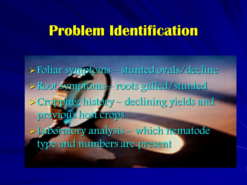 Problem Identification  Foliar symptoms – stunted ovals/decline  Root symptoms – roots galled/stunted  Cropping history – declining yields and previous host crops  Laboratory analysis – which nematode type and numbers are present