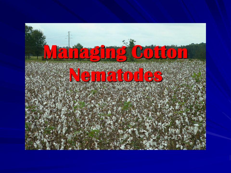 Managing Cotton Nematodes