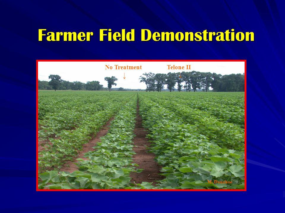 Farmer Field Demonstration No Treatment ↓ Telone II ↓ M. Donahoe