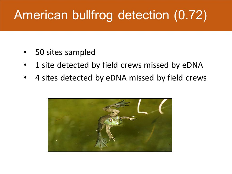 American bullfrog detection (0.72) 50 sites sampled 1 site detected by field crews missed by eDNA 4 sites detected by eDNA missed by field crews
