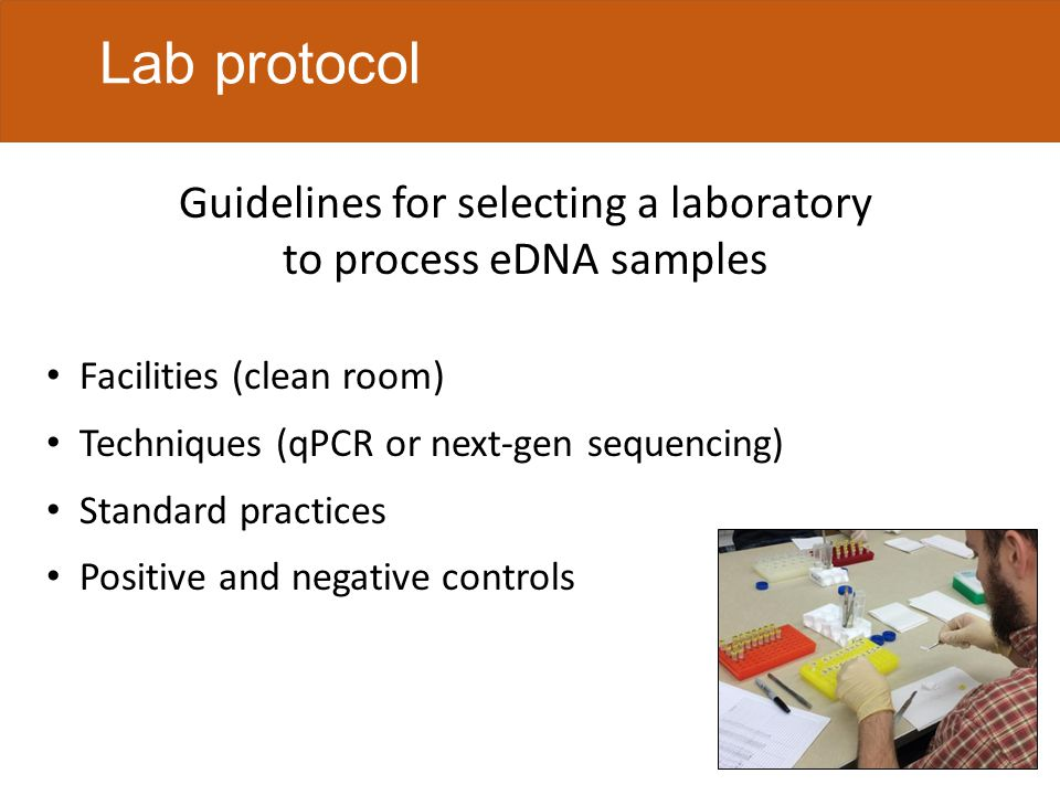 Lab protocol Facilities (clean room) Techniques (qPCR or next-gen sequencing) Standard practices Positive and negative controls Guidelines for selecting a laboratory to process eDNA samples