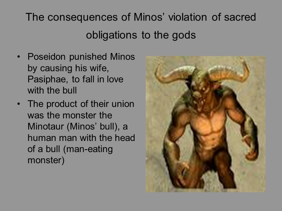 The consequences of Minos' violation of sacred obligations to the gods Poseidon punished Minos by causing his wife, Pasiphae, to fall in love with the bull The product of their union was the monster the Minotaur (Minos' bull), a human man with the head of a bull (man-eating monster)