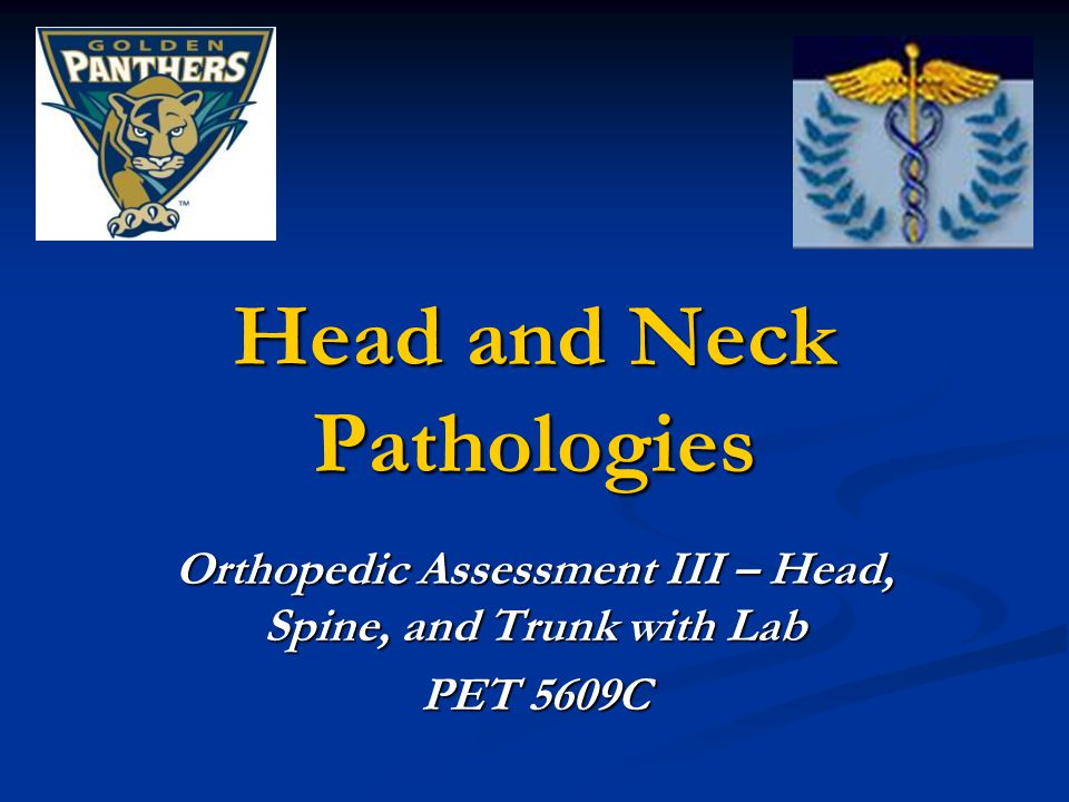Head and Neck Pathologies Orthopedic Assessment III – Head, Spine, and Trunk with Lab PET 5609C