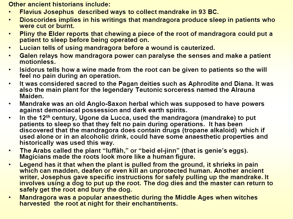 Other ancient historians include: Flavius Josephus described ways to collect mandrake in 93 BC. Dioscorides implies in his writings that mandragora pr