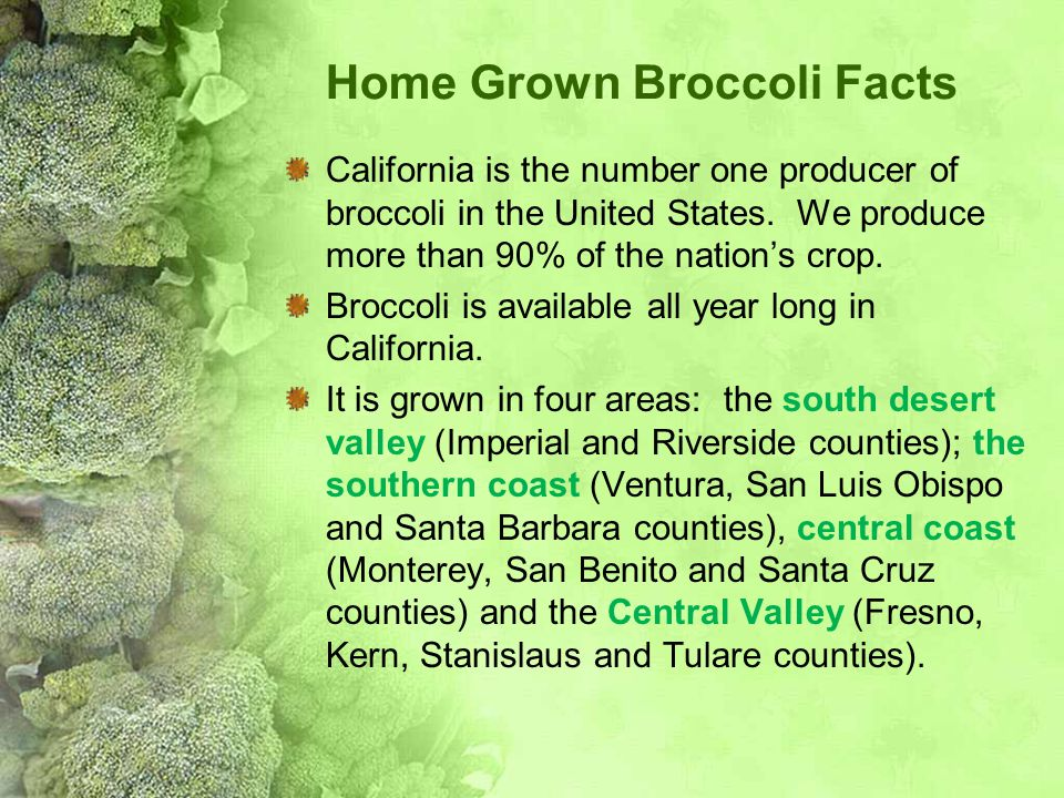Home Grown Broccoli Facts California is the number one producer of broccoli in the United States. We produce more than 90% of the nation's crop. Brocc