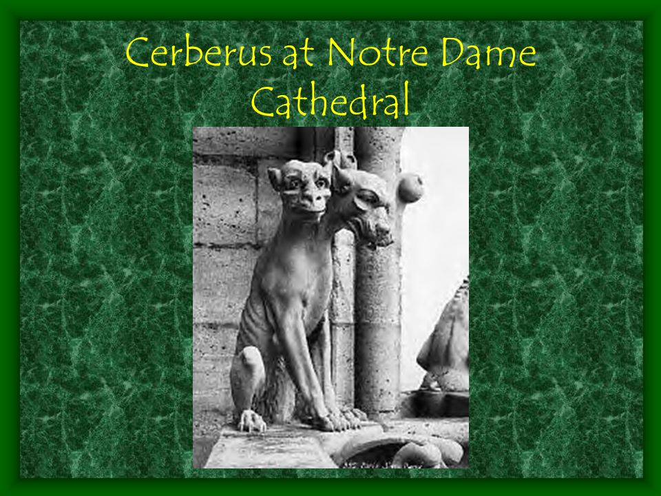 Cerberus at Notre Dame Cathedral