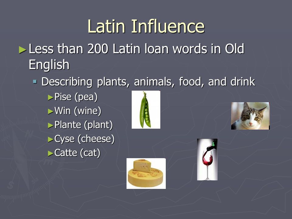 Latin Influence ► Less than 200 Latin loan words in Old English  Describing plants, animals, food, and drink ► Pise (pea) ► Win (wine) ► Plante (plan