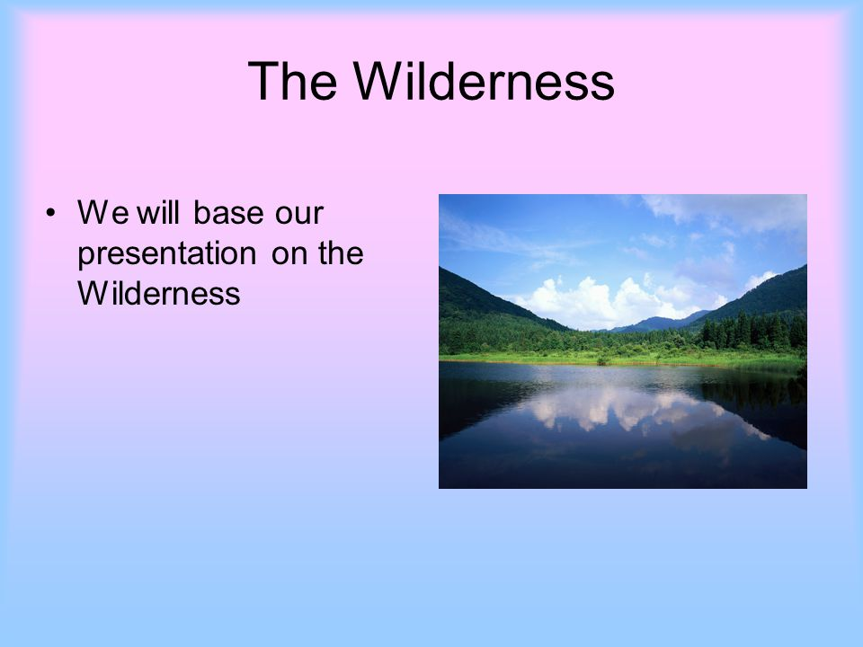 The Wilderness We will base our presentation on the Wilderness