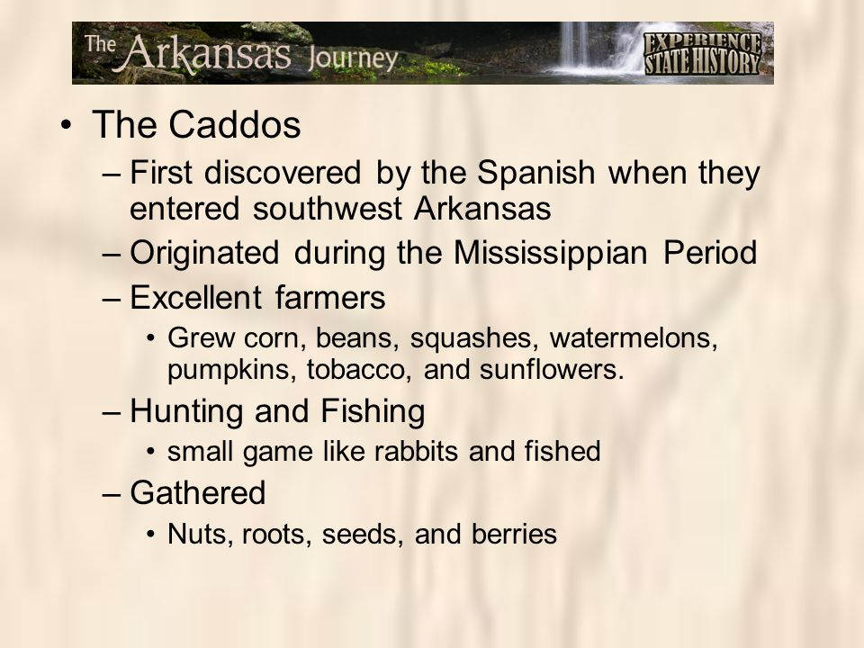 The Caddos –First discovered by the Spanish when they entered southwest Arkansas –Originated during the Mississippian Period –Excellent farmers Grew c