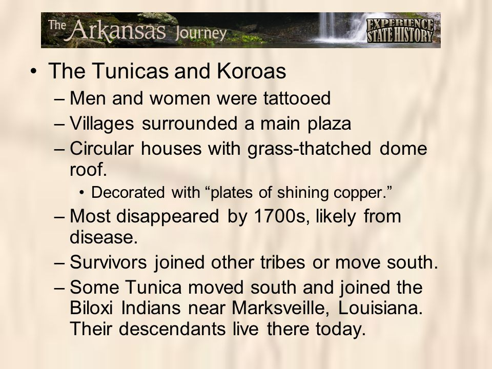 The Tunicas and Koroas –Men and women were tattooed –Villages surrounded a main plaza –Circular houses with grass-thatched dome roof. Decorated with ""