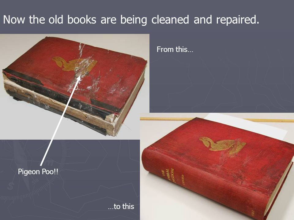 Now the old books are being cleaned and repaired. From this… …to this Pigeon Poo!!