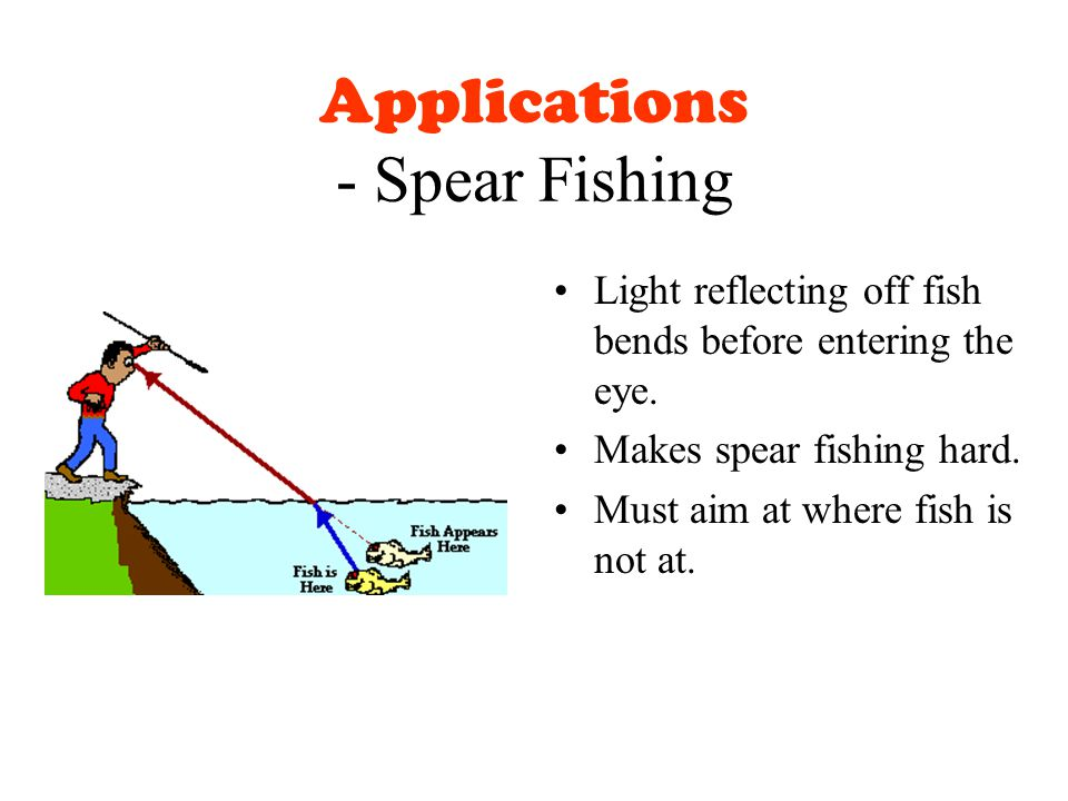 Applications - Spear Fishing Light reflecting off fish bends before entering the eye.