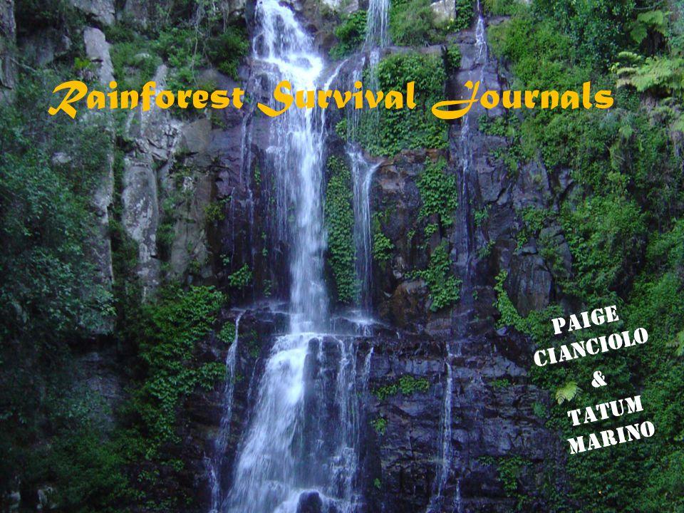 Rainforest Survival Journals Paige Cianciolo & Tatum Marino