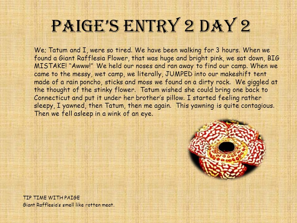 Paige's Entry 2 Day 2 We; Tatum and I, were so tired.