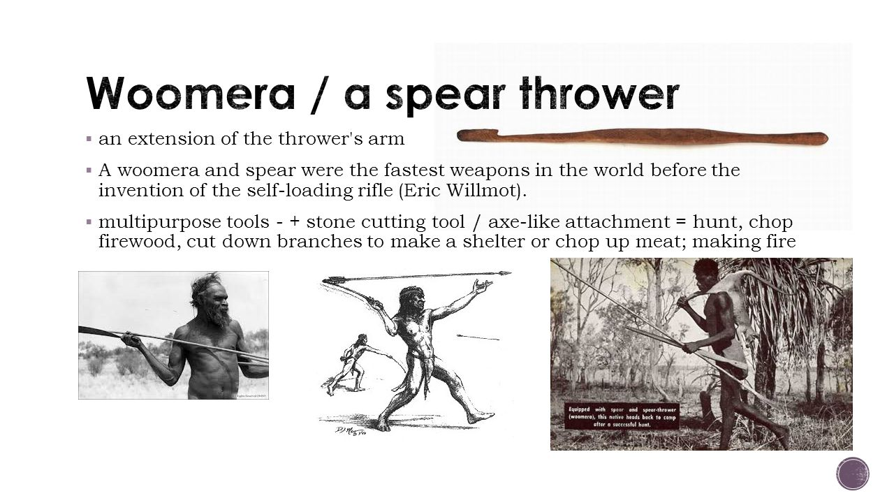  an extension of the thrower s arm  A woomera and spear were the fastest weapons in the world before the invention of the self-loading rifle (Eric Willmot).
